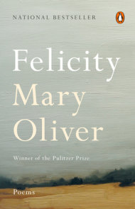 Winter Solstice Poems Mary Oliver 2