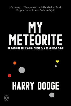 My Meteorite by Harry Dodge