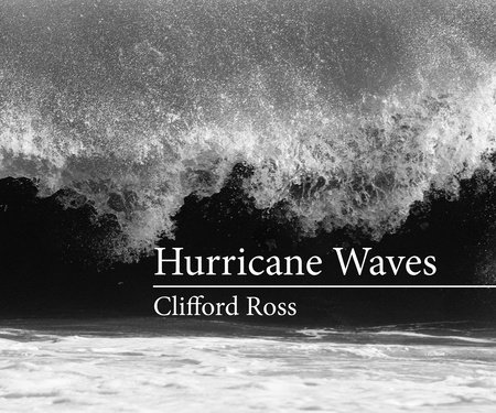 Hurricane Waves by Clifford Ross