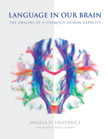 Language in Our Brain by Angela D. Friederici