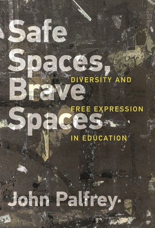 Safe Spaces, Brave Spaces by John Palfrey