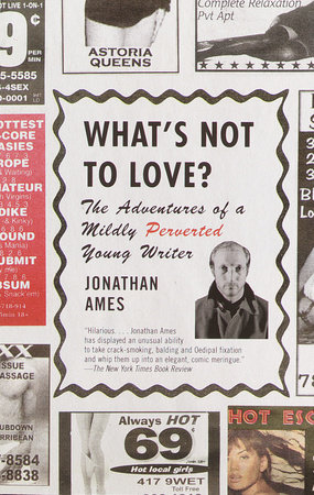 What's Not to Love? by Jonathan Ames