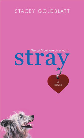 Stray by Stacey Goldblatt