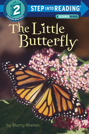 The Little Butterfly by Sherry Shahan