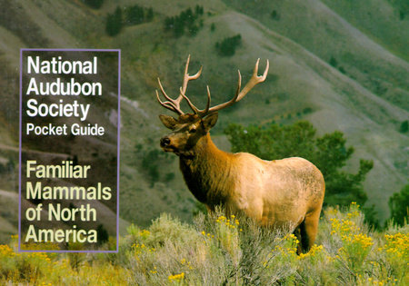 National Audubon Society Pocket Guide to Familiar Mammals by National Audubon Society