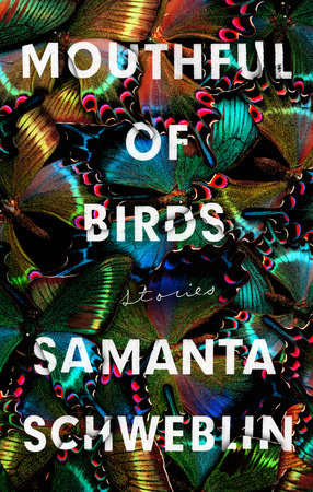 Mouthful of Birds by Samanta Schweblin