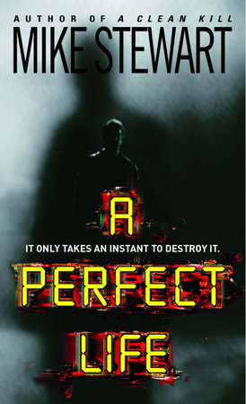 A Perfect Life by Mike Stewart