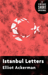 Istanbul Letters