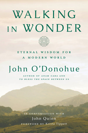 Walking in Wonder by John O'Donohue and John Quinn