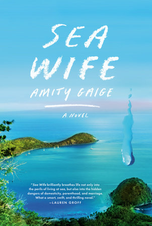 Sea Wife by Amity Gaige