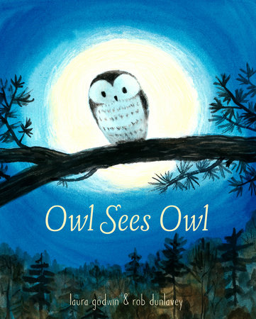 Owl Sees Owl by Laura Godwin and Rob Dunlavey