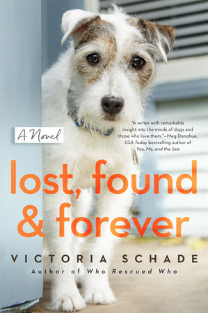 Lost, Found, and Forever by Victoria Schade
