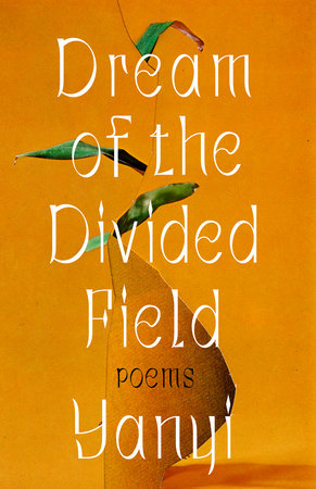 Dream of the Divided Field by Yanyi