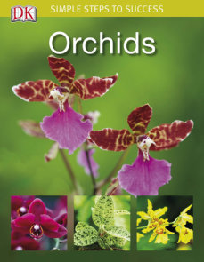 Simple Steps to Success: Orchids