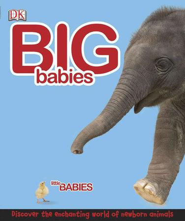 Big Babies, Little Babies by DK