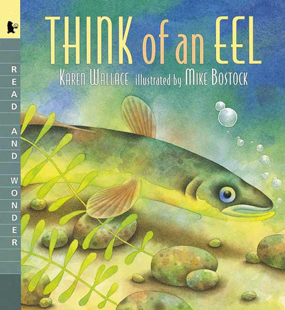 Think of an Eel by Karen Wallace; Illustrated by Mike Bostock