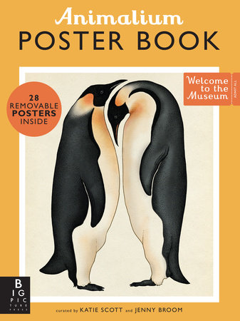 Animalium Poster Book by Jenny Broom