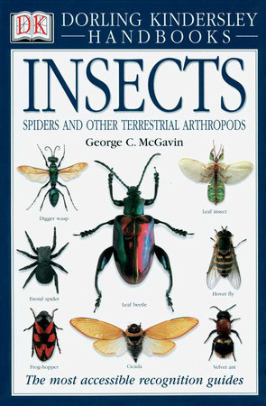 Handbooks: Insects by George C. McGavin