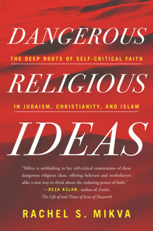 Dangerous Religious Ideas by Rachel S. Mikva
