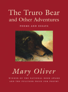 The Truro Bear and Other Adventures