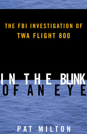 In the Blink of an Eye by Pat Milton