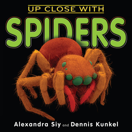 Up Close With Spiders by Alexandra Siy