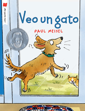 I See a Cat by Written & illustrated by Paul Meisel