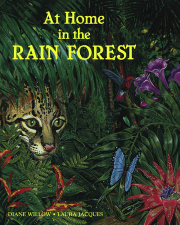 At Home in the Rain Forest by Diane Willow