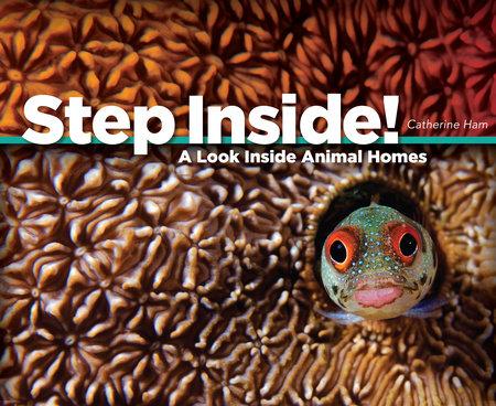 Step Inside! by Catherine Ham