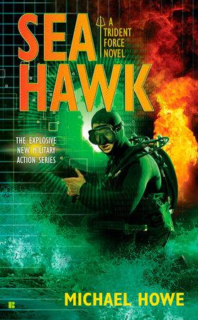 Sea Hawk by Michael Howe