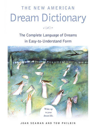 The New American Dream Dictionary by Joan Seaman and Tom Philbin