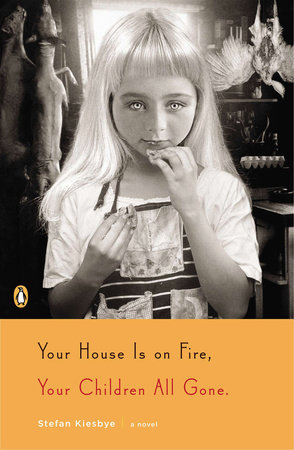 Your House Is on Fire, Your Children All Gone by Stefan Kiesbye