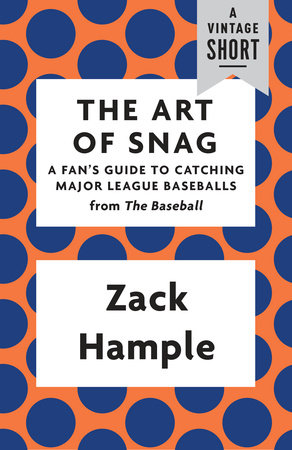 The Art of Snag by Zack Hample