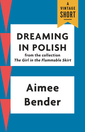 Dreaming in Polish by Aimee Bender