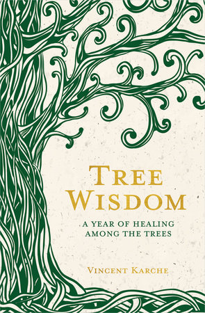 Tree Wisdom by Vincent Karche
