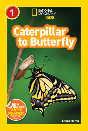 National Geographic Readers: Caterpillar to Butterfly by Laura Marsh