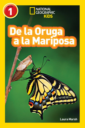 National Geographic Readers: De la Oruga a la Mariposa (Caterpillar to Butterfly) by Laura Marsh