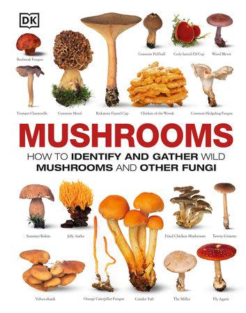 Mushrooms by DK