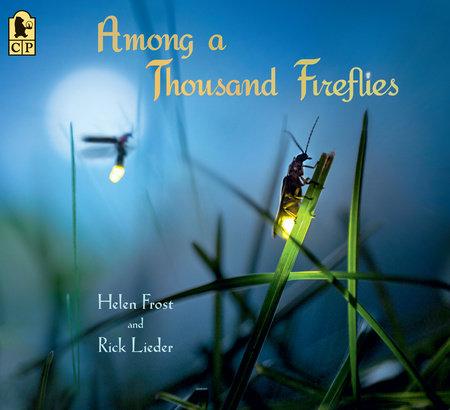 Among a Thousand Fireflies by Helen Frost