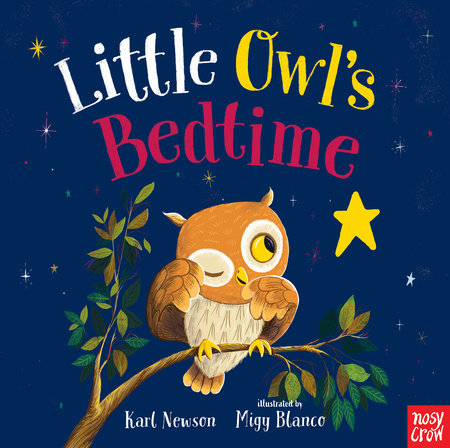 Little Owl's Bedtime by Karl Newson