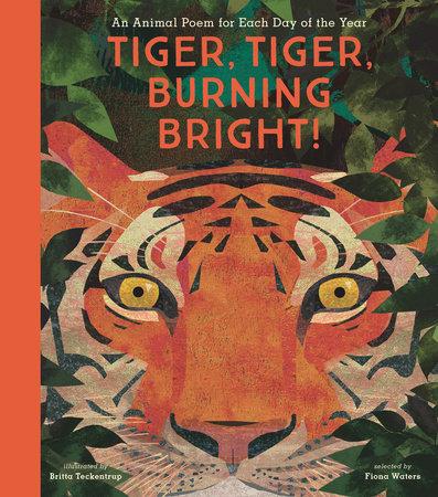 Tiger, Tiger, Burning Bright! by Nosy Crow