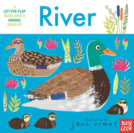 Animal Families: River by Nosy Crow