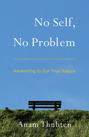 No Self, No Problem by Anam Thubten