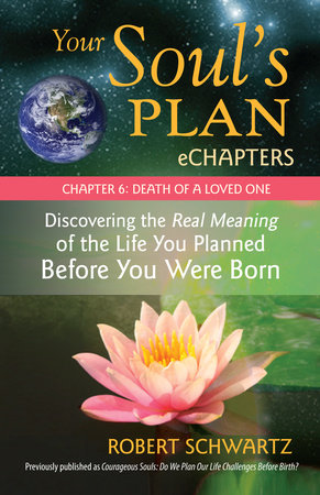 Your Soul's Plan eChapters - Chapter 6: Death of a Loved One by Robert Schwartz