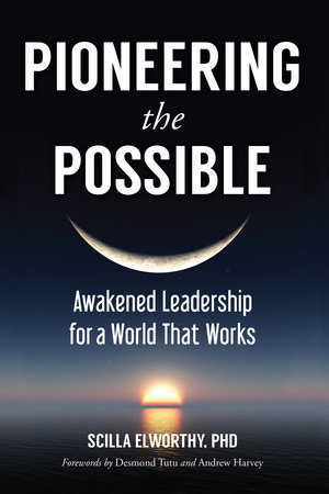 Pioneering the Possible by Scilla Elworthy