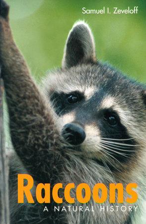 Raccoons by Samuel I. Zeveloff