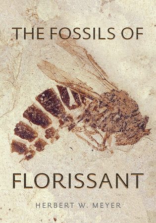 The Fossils of Florissant by Herbert W. Meyer