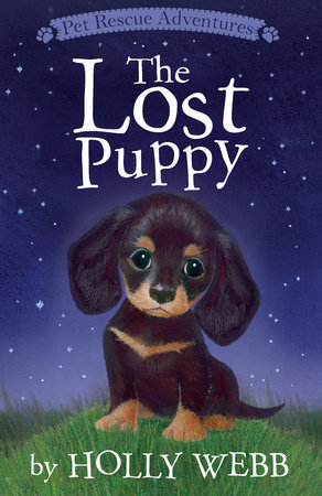 The Lost Puppy by Holly Webb