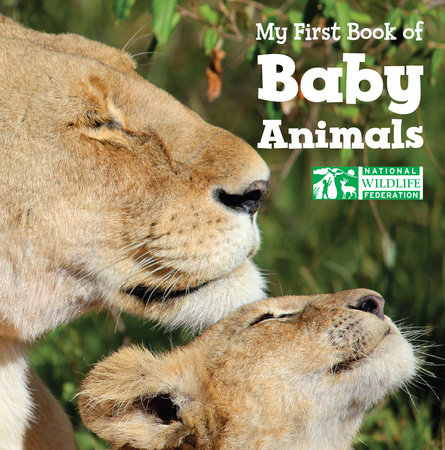 My First Book of Baby Animals (National Wildlife Federation) by National Wildlife Federation