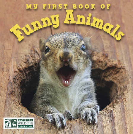 My First Book of Funny Animals (National Wildlife Federation) by National Wildlife Federation